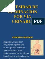 CLASE-11-NECESIDAD-DE-ELIMINACION-POR-VIA-URINARIA (1) enfermeria basic