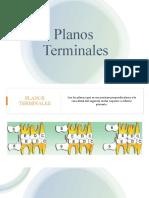 PLANOS TERMINALES