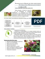CHARLAS MARZO.pdf