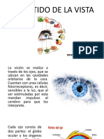2. EL SENTIDO DE LA VISTA - SENTIDO DEL OLFATO.pdf