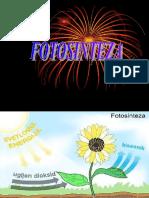 Fotosinteza Cl. X A