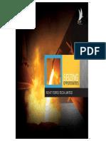 brochure-2011