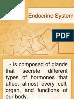 2620-Endocrine-System (3)