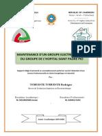 Rapport de Stage Iuc 2020 - Maintenance d'Un Groupe Electrogene Cas Du Groupe de l'Hopital Saint Padre Pio