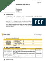 PROGRAM ANUAL inicial 3.doc