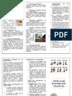 Tecnica de exposicion folleto