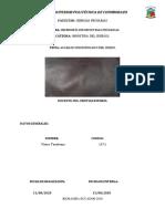 Tenelema_Victor_Acabado Hidrofugadopdf.pdf