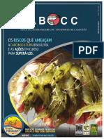 Revista-da-ABCC-Ediçao-Fenacam-2017-Ano-XIX-N.-2-Novembro-2017.pdf