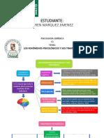 PSICOLOGIA FENOMENOS Y TRASTORNOS PSICOLOGICOS_d9386dc9522745cea2bebbc9e1f7c85d.pdf