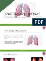 ANATOMIA PULMONAR.pdf