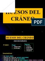 1. HUESOS DEL CRÁNEO.pptx