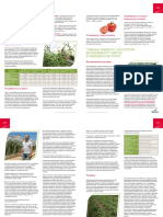Seminis_Tomato_Leaflet_Growing-Technology_RU