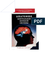 Анатомия центральной нервной системы. Н.В. Воронова.pdf