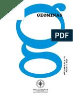 Geominas 82