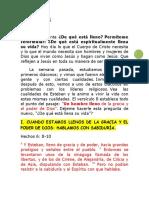 Hechos 6_8-15.pdf