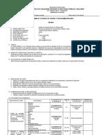 Sílabo Técnicas de ingeniería de comunicación de datos y redes.docx