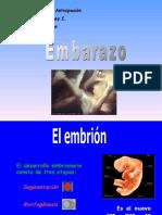 embarazo y desarrollo embrionario.ppt