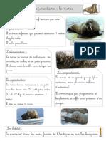 Le-morse_documentaire_BDG.pdf