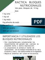 practicabloqueses-11053017320
