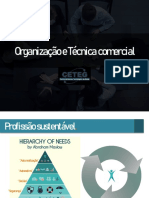 Organização e tecnica Comercial - Kaleb
