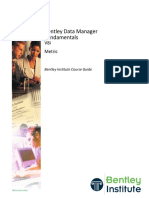 Data Manager Fundamentals_SS4_TRN016690_10002_Metric