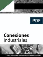 MASTER_MANG_IND_2009[CONEXIONES INDUSTRIALES].pdf