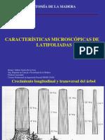 07 Carac. micros. latl-2018