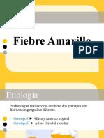 FIEBRE AMARILLA EXPO