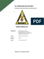 GARRA HIDRAULICA