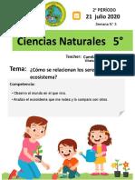 ciencias 5 Ecosistemas (2).docx