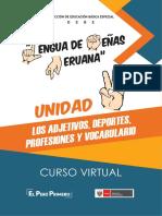 UNIDAD VI - LSP