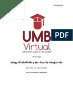 PDF Integral indefinida y técnicas de Integración.pdf