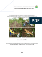 CO2%20sequestration%20in%20agroforesrty%20Litsea%20and%20Cassava_