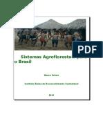 Sistemas Agroflorestais para o BR livro de Mauro Schorr