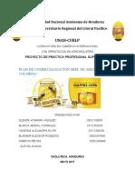 INFORME LA COLMENA original - copia.docx