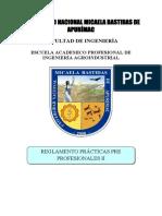 UNAMBA - PRACTICAS PRE PROF. II