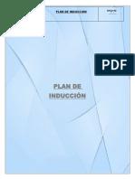 plan induccion