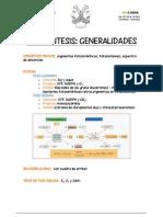 FICHA fotosíntesis GENERALIDADES