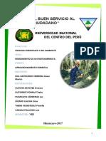 INFORME-DEL-RENDIMIENTO-DE-UN-MOTOSIERRISTA-CAJAS