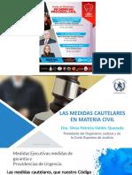 Medidas cautelares Dr Silvia Patricia Valdez Quezada