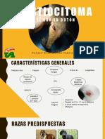 Exposicion de Histiocitoma.pptx