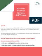 Anatomy Practical OSPE