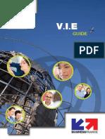 VIE guide.pdf
