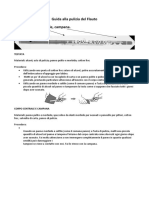 Guida alla pulizia del Flauto.doc