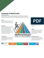 MyPyramid Anatomy