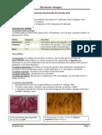 7-cours_intestin4eme_pdf.pdf