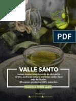 CATALAOGO VALLE SANTO aceite de oliva