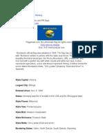 Montana State Flag History