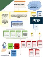 Mapa Conceptual Seguridad del Paciente