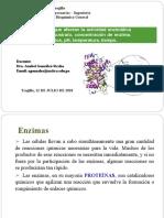 T-4 Factores que afectan la acticidad enzimatica (2).docx